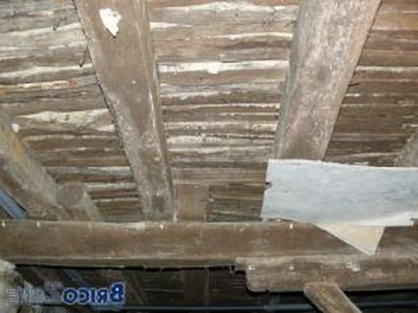 Isolation 1 euro plafond revenus 5ddfd99e5d103